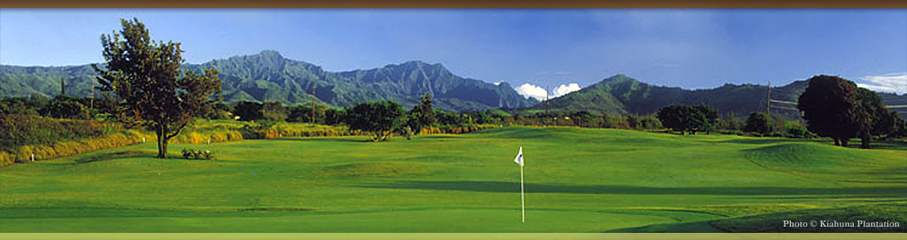 Sports and Active events at Koloa Plantation Days, Kauai, Hawaii